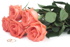 dzwoni róż target738_1_ Obraz Royalty Free