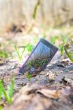 Dzwoni smartphone na trawie w?r?d kwiat?w, b??kitne ?nie?yczki technologie fotografia stock