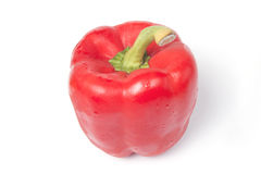 dzwonkowego pieprzu czerwień zdjęcie stock
