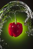 dzwonkowego pieprzu czerwieni wodna fala Fotografia Stock