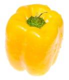 dzwonkowego pieprzu kolor żółty Obrazy Stock