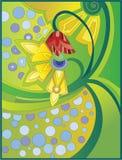 dzwonkowi czarodziejscy kwiaty Zdjęcia Royalty Free