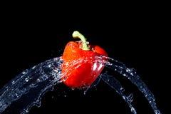 dzwonkowy świeży dostaje strumień pieprzową czerwoną wodę uderzeniu Obraz Stock