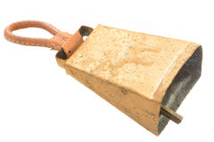 Dzwonkowy renifer Fotografia Stock
