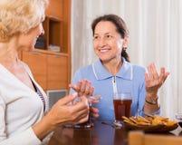 Żeńscy emeryci pije herbaty Fotografia Stock