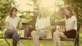 Żeńscy przyjaciele w parku zdjęcie wideo
