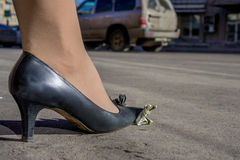 Żeńska noga na zmiętym dolarowym banknocie Fotografia Stock