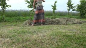 Żeńska ogrodniczka w pięknego smokingowego świntucha siana suchej trawie w lecie 4K zbiory