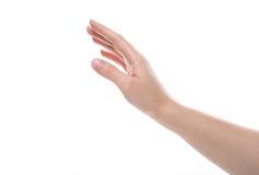 Żeńska ręka Fotografia Royalty Free