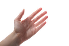 Żeńska ręka Obraz Stock