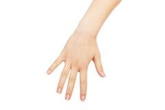 Żeńska ręka lowing chwytać coś, uprawa, wycinanka zdjęcia stock