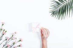 Żeńska ręka wiąże faborek na pudełku z prezentem na białym backgro obraz stock