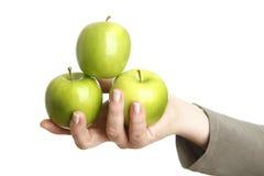 Żeńska ręka z trzy zielonymi jabłkami Obrazy Stock