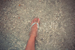 Żeńska stopa Zdjęcia Stock
