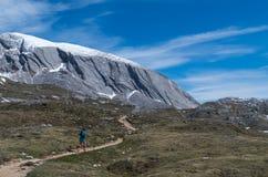 Żeński bieg w górach pod światłem słonecznym Fotografia Stock