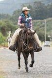 Żeński kowboj na konia plecy w Ekwador Fotografia Stock