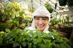Żeński naukowiec ono uśmiecha się podczas gdy trzymający roślinę Obraz Royalty Free