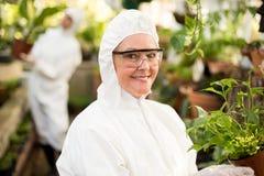 Żeński naukowiec w czystym kostiumu mieniu puszkował rośliny Zdjęcia Stock