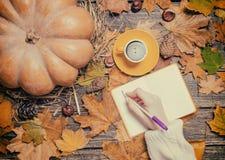 Żeński ręki wrinig coś w notatniku na jesieni tle Obraz Royalty Free