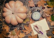 Żeński ręki writing coś w notatniku na jesieni tle Zdjęcie Royalty Free