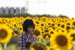 Żeński rolnik, agronom, w polu z słonecznikami Obrazy Royalty Free