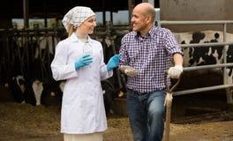 Żeński weterynarz i robotnik rolny w cowshed Zdjęcie Stock