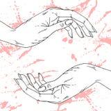 Żeńskie ręki Zdjęcia Stock