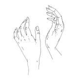 Żeńskie ręki. Ręka rysująca ilustracja. Zdjęcie Stock