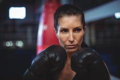 Żeńskiego boksera spełniania bokserska postawa obrazy royalty free