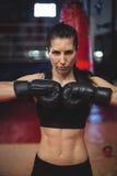 Żeńskiego boksera spełniania bokserska postawa obrazy stock