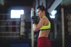 Żeńskiego boksera spełniania bokserska postawa zdjęcie royalty free
