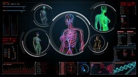 Żeńskiego ciała skanerowania naczynie krwionośne, limfatyczny, krążeniowy system w cyfrowym pokazie dashboar, ilustracja wektor