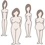 Żeńskiego ciała typ royalty ilustracja