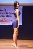 Żeńskiej postaci model w wieczór sukni pokazuje jej best Fotografia Royalty Free