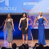 Żeńskiej postaci modele w wieczór sukni pokazują ich best Obraz Royalty Free