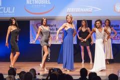 Żeńskiej postaci modele w wieczór sukni pokazują ich best Zdjęcia Royalty Free