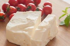 E锌希腊白软干酪 免版税库存图片