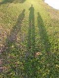 1 2 e 3 È me e le mie piccole nipoti Fotografie Stock