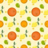 E η ανασκόπηση έκοψε το μισό ανανά καρπού που τεμαχίστηκε Θερινό φωτεινό υπόβαθρο με το λεμόνι και το πορτοκάλι διανυσματική απεικόνιση