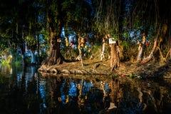 E Κανάλια Xochimilco Νησί των κουκλών στοκ εικόνες με δικαίωμα ελεύθερης χρήσης
