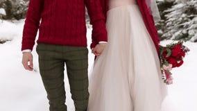 E Воодушевленность свадьбы зимы r видеоматериал