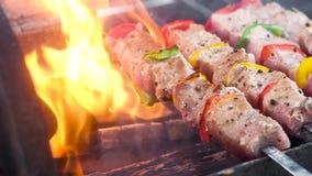 E Мясо и перец прокалываны до конца и зажарены на углях видеоматериал
