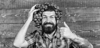E Парень фермера бородатый с доморощенными виноградинами сбора положенными на голову Фермер гордый виноградин стоковая фотография rf