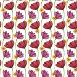 E Цветки мак и маргаритка иллюстрация штока
