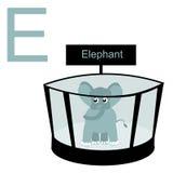 E для слона Ягнит алфавит Стоковые Фото