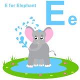 E для слона Ягнит алфавит Стоковые Изображения