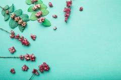 E 一套秋叶和野生装饰莓果 库存照片