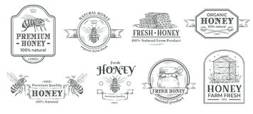 E 养蜂业商标、减速火箭的蜂徽章和葡萄酒手拉的蜂蜜酒标签传染媒介例证集合 皇族释放例证