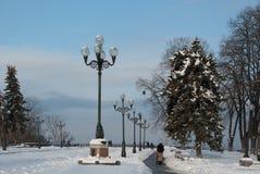 E 冬天 雪 晴朗的早晨 免版税库存图片