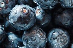 E 在成熟和水多的新鲜的被采摘的蓝莓特写镜头的大美好的水下落 抽象自然tex宏观看法  免版税库存照片